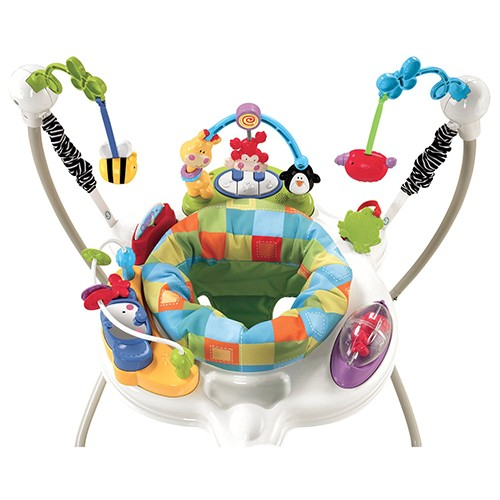 Discover' N Grow '  Jumperoo W9466